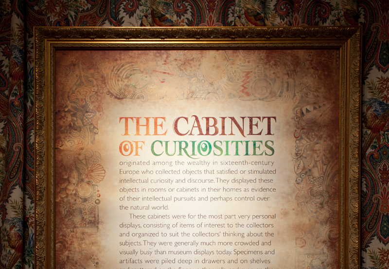 Cabinet-poster-front_w800