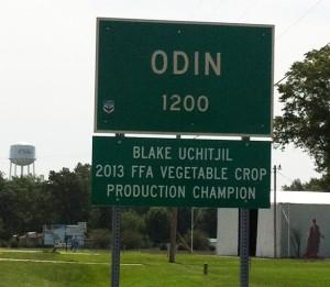 Odin, Illinois