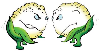 cauliflower_v02